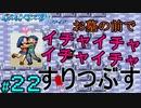 【24歳フリーターの】ポケモンルビー・サファイア~アクア団でクリアの旅~part22【レトロゲー】【ソードシールド発売記念!】