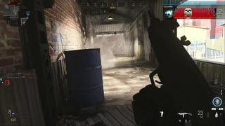 蛆虫とは言わないで Call of Duty Modern Warfare ♯21 加齢た声でゲームを実況