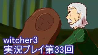 探し人を求めてwitcher3実況プレイ第33回
