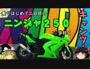 【Ninja250R】はじめて二日目のキャンプツーリング後編【ゆっくり車載】