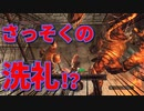 【初見実況】変な人がダークソウル2をやってみる【ダクソ2】part7