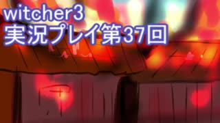 探し人を求めてwitcher3実況プレイ第37回