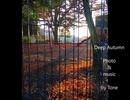 TTMP original music & image movie【 Deep Autumn 】