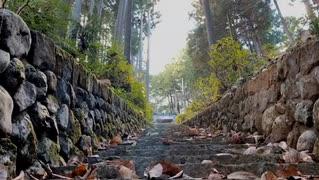 2019年11月29日1枠目 退廃と紅葉探し、鳩ノ巣渓谷周辺まったり散歩