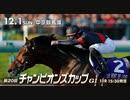 【中央競馬】プロ馬券師よっさんの第20回チャンピオンズカップ(GⅠ)