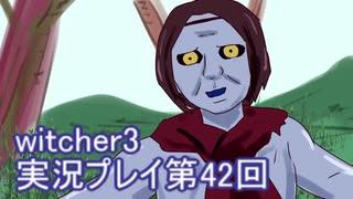 探し人を求めてwitcher3実況プレイ第42回