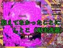 【実況】東方を10ミリも知らない僕が弾幕STGに挑戦【紺珠伝EX】 3