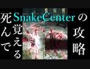 【死んで覚える】SnakeCenter(突撃槍)の攻略 Parry Godの対人&死合い&侵入 Part 29 Dark Souls 2 PvP - ダークソウル2