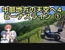 おバイク!中部地方の天空へ 4 ビーナスライン①(夏)【GLADIUS】