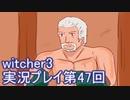 探し人を求めてwitcher3実況プレイ第47回