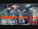 【DaysGone】ヘタレゴーン【初見実況】#.66