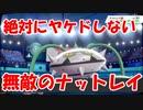 【ポケモン剣盾】10回以上ねっとうを当ててもヤケドしないナットレイが最強すぎる【ランクバトル】