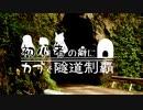 【東北姉妹車載】初心者の癖にカブで隧道制覇 13本目