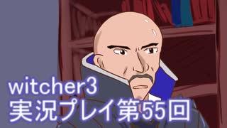 探し人を求めてwitcher3実況プレイ第55回