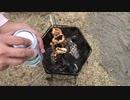 家キャン飯5鶏胸肉とネギ