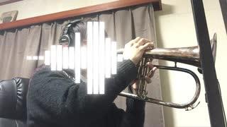 ガールズ&パンツァーTV版サントラより「健闘を讃え合います!」をフリューゲルホルンで演奏してみた