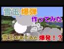 【マイクラ解説】当たると爆発!?「雪玉爆弾」を作ってみた! コマンド一つだけ!【作ってみた】