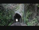 押日素掘隧道群②観音掘もどき?~狸谷隧道