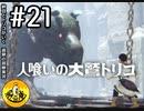 【初見実況】納豆とトリコがいく 遺跡の冒険 その21