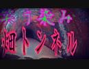 【恐怖映像】~笑う染み  畑トンネル~ 生放送心霊配信