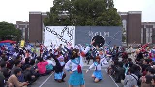【京大学祭】かぐや様は踊らせたい~オタクたちのニコニコダンステラミックス~【令和最初】 4/4