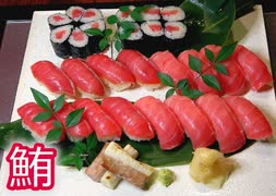 【握ってみた】みんな大好きマグロづくし!中とろ赤身漬けマグロの握り寿司!