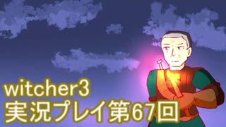 探し人を求めてwitcher3実況プレイ第67回