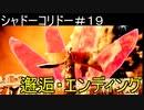 (完結済)恐怖!!【シャドーコリドー・影の回廊】をビビりが実況#19