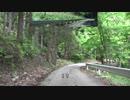 【酷道ラリー】東九州縦断険道コース その20
