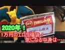 【福袋開封】総額○万円!? 1万円のエロゲ福袋2020年を開封!