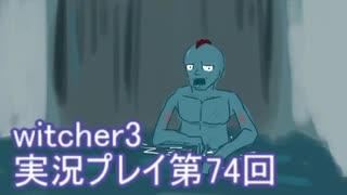 探し人を求めてwitcher3実況プレイ第74回