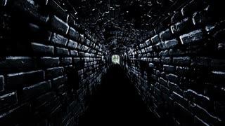 【ホラー実況】シャドーコリドー#31(終)【Shadow Corridor】