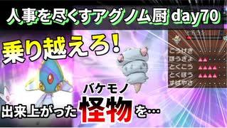 【ポケモンUSUM】人事を尽くすアグノム厨-day70-【第2回Sin人事アグノム報告会&ガチ神回】
