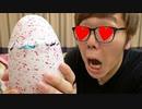 巨大な卵放置したら何か生まれてきた!!!