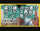 『菜々緒、小出恵介 サプライズ再会 スッピン号泣!?』についてetc【日記的動画(2020年01月06日分)】[ 281/365 ] (1000/1000)