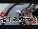 【実況】新約・加速するスカイリムの旅 Page414
