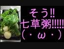 【初実写】料理ゴリラと呼ばれた女が、初めての七草粥に挑戦!!【汚名返上】