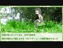 【サブコンテンツちほー】アカミミガメ解説