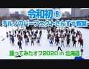 【令和初⑨】チルノのパーフェクトさんすう教室踊ってみたオフ2020 in 北海道 通常Ver【極寒】 #チルノオフ