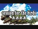 session for the birds - ああああ