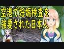 中国人妊婦のせいで、空港で妊娠検査を強いられる事になった日本人女性・・・
