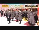 【乃木坂MAD】卒業生×冬のある日の唄