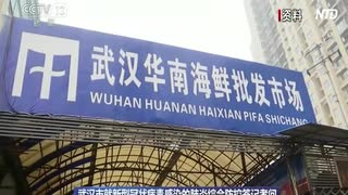 中国当局、ヒトヒト感染認める