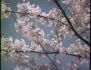 【レア】昭和のテレビの風景「フィラー映像」