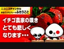 イチゴ農家の嘆き、切なる願いを聞いてください!