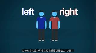 右派と左派の違い:サヨクの革命ごっこ