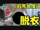 【実況】ひんしになるたびに服を脱ぐポケモン剣盾ランクバトル
