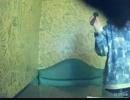 【うたスキ動画】君だけの旅路/Suara を歌ってみた【ぽむっち】