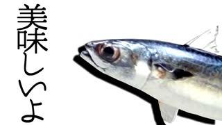 【Fate/MMD】ぐだ子と鯖たちで『気まぐれメルシィ』【MMD-PVF6】