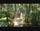 低級家具日記 2019年9月14日戸隠森林植物園2